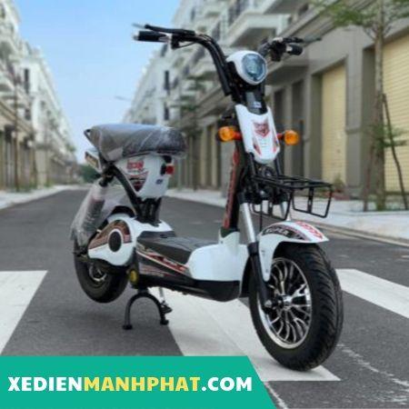Xe đạp điện 133S Mini mới