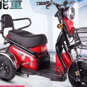xe đạp điện ba bánh