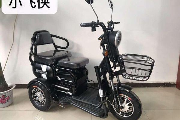 Xe đạp điện 3 bánh 2 chỗ ngồi