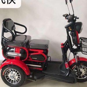 Xe điện 3 bánh 2 chỗ ngồi